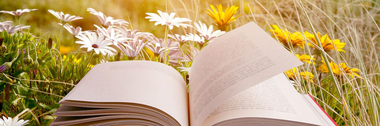 Open Book in FLower Field
